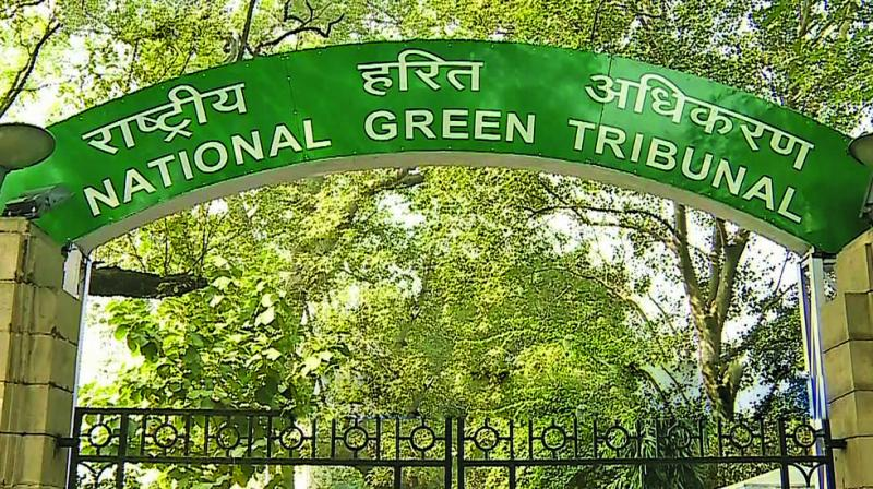 National Green Tribunal Orders to use eco-friendly alternatives for flex.